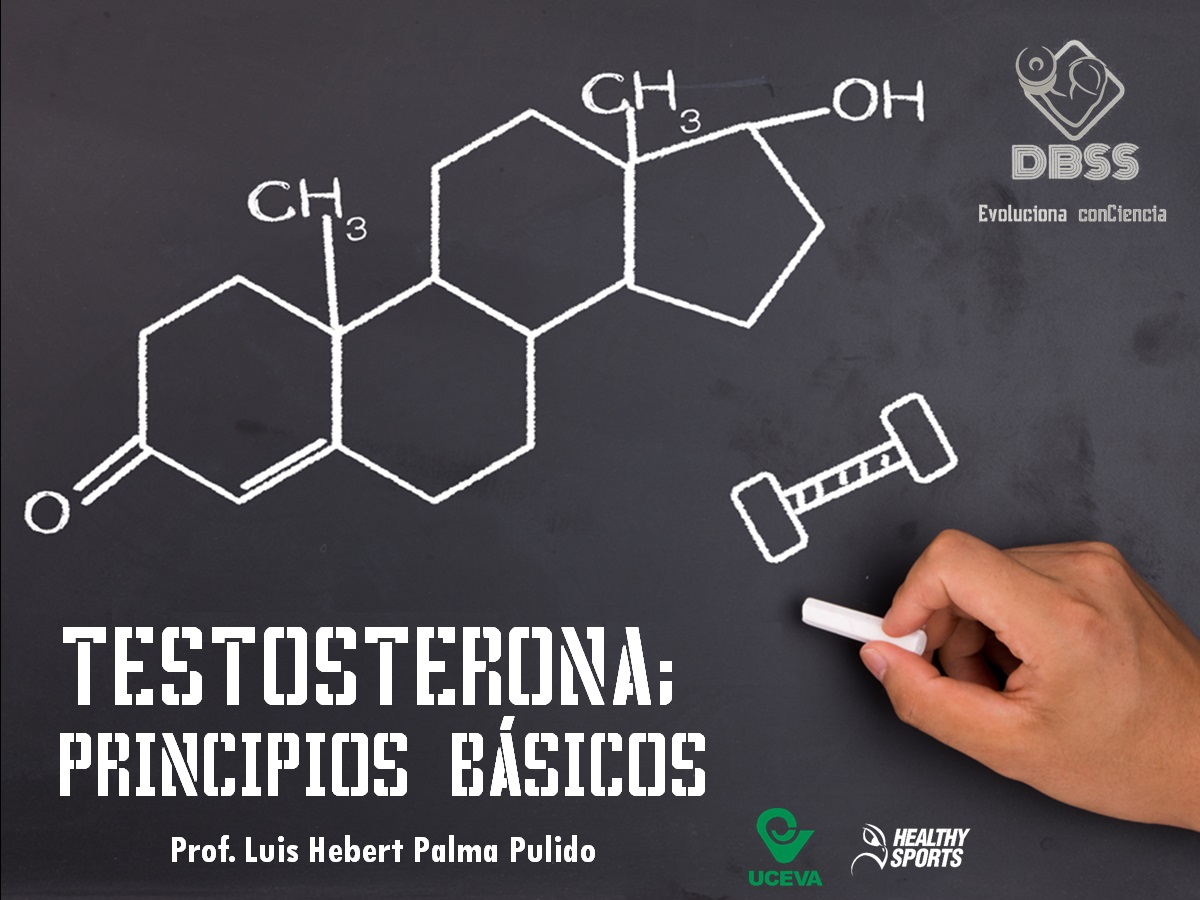 TESTOSTERONA; PRINCIPIOS BÁSICOS - DBSS