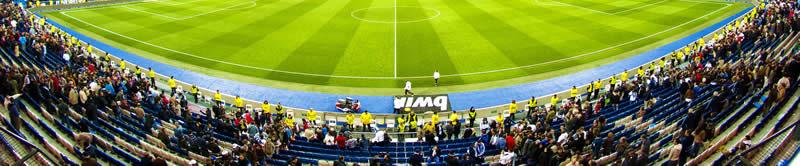 Experto en Seguridad de Instalaciones Deportivas y Eventos Recreativos, Culturales y Deportivos: Iberoamérica