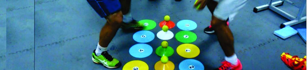 Curso en Neurociencias Aplicadas al Movimiento - Modelo de Intervención Multisensorial (MIMuS)