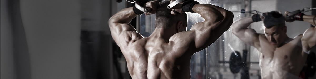 Cluster Training: Organización para Hipertrofia Muscular