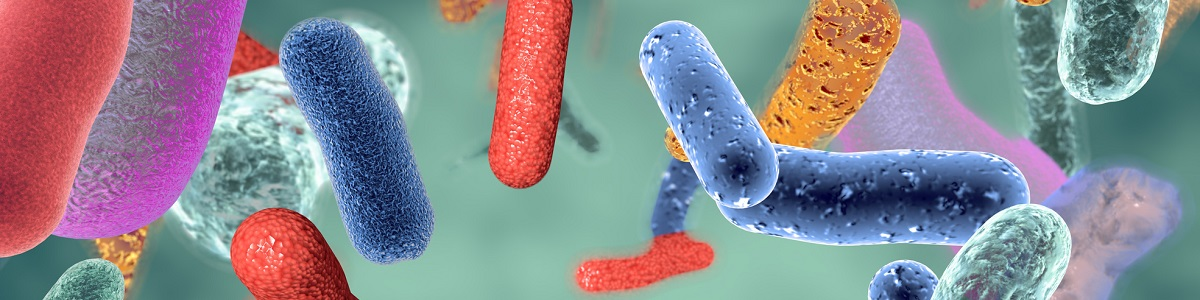 Microbiota y Patología Gastrointestinal. Abordaje desde la Nutrición