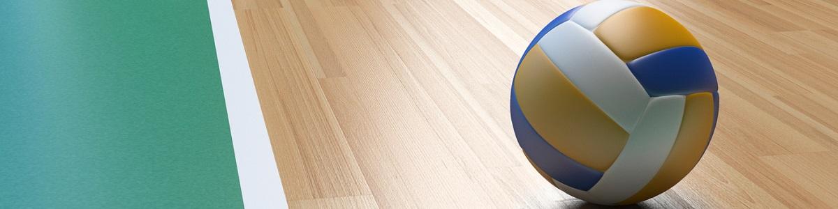 Diplomado Universitario en Enseñanza y Entrenamiento de Voleibol