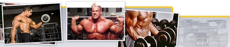 Webinar de Suplementación para la Estética Corporal. Primera Parte: Hipertrofia Muscular