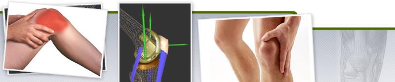 Webinar de Biomecánica y Anatomía Funcional de la Rodilla