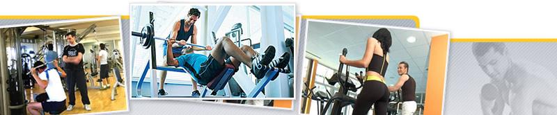 Curso de Programación de Entrenamiento en Sala de Fitness. Elaboración de Rutinas de Entrenamiento, Dinámica de Elección, Ejecución y Corrección de Ejercicios