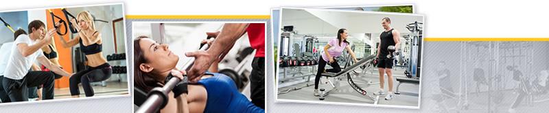 Webinar de Bases Anatómicas y Fisiológicas del Organismo Aplicados a Entrenamiento en Sala de Fitness