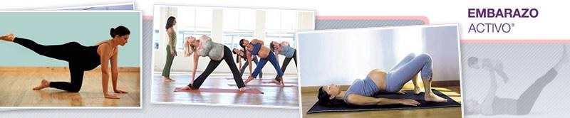 Webinar de Cómo Armar una Clase de Gym Para Embarazadas
