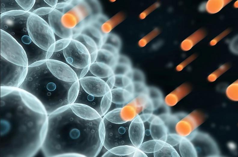 Ejercicios de alta intensidad: su impacto en el retículo sarcoplásmico
