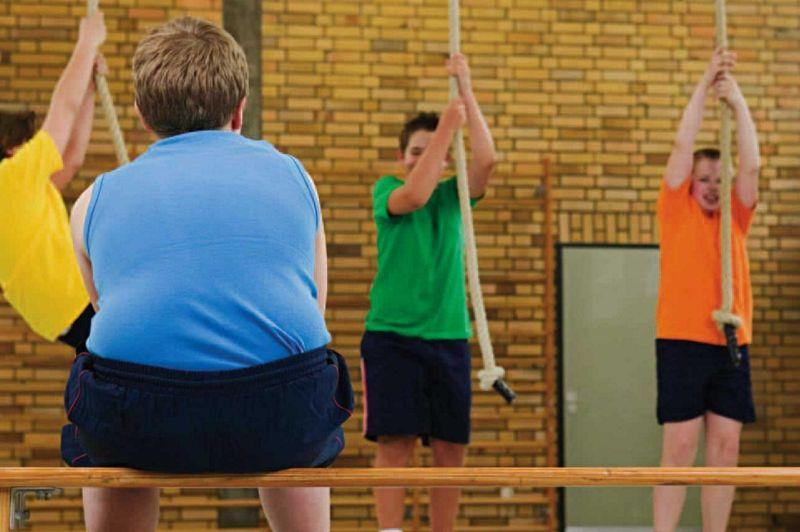 Obesidad y Síndrome Metabólico, en la Adolescencia: Rol del Ejercicio Físico