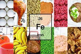 Hierro: Metabolismo y Sistema Inmunitario