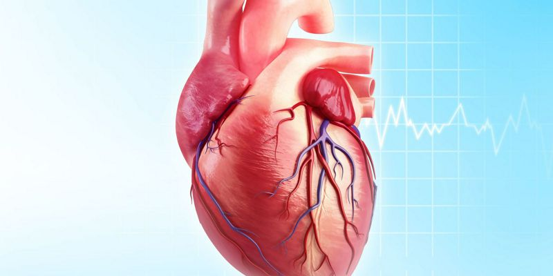 Recomendaciones para la actividad física en pacientes con cardiopatías
