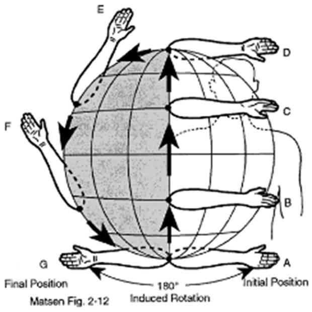 Aplicación del método globográfico en la enseñanza y entrenamiento de la técnica deportiva