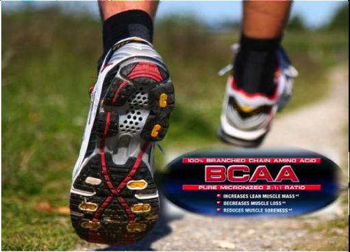 BCAA como potenciadores de la utilización de grasas en el ejercicio