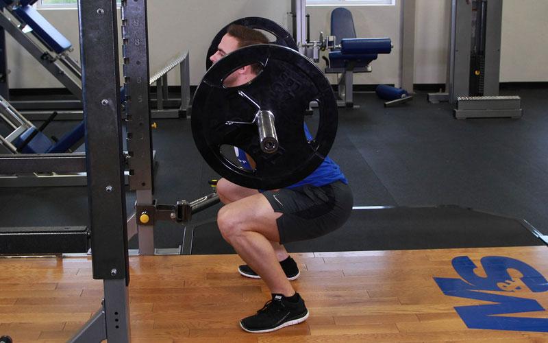 Hipertrofia de la fibra muscular en respuesta a 6 semanas de entrenamiento de la fuerza de alto volumen