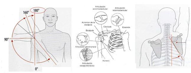¿Que son  el Ritmo escapulo-humeral,  la Diskinesia escapular  y el  GIRD?