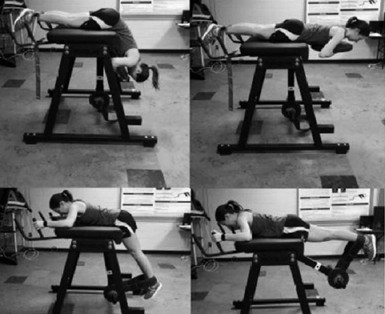 Comparación biomecánica del ejercicio de hiperextensión inversa en máquina y el ejercicio de hiperextensión