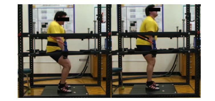 Sentadillas vs Empujones de cadera, Parte IV: Transferencia al Rendimiento