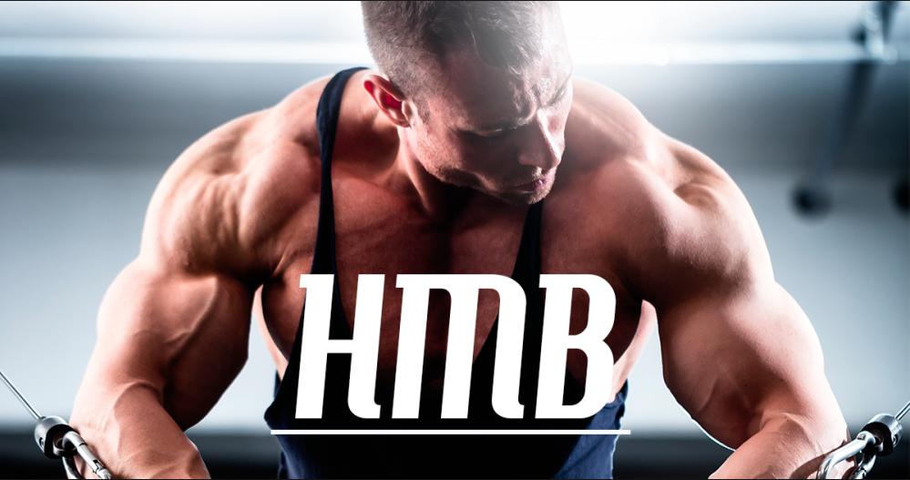 El HMB frente a la pérdida y ganancia de la masa muscular