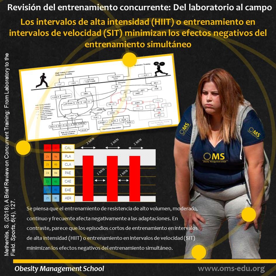 Revisión del entrenamiento concurrente: Del laboratorio al campo