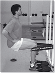 Tirante musculador VS Squat