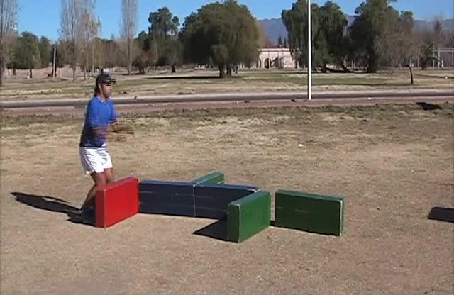 Aspectos Fisiológicos del Entrenamiento de la Saltabilidad