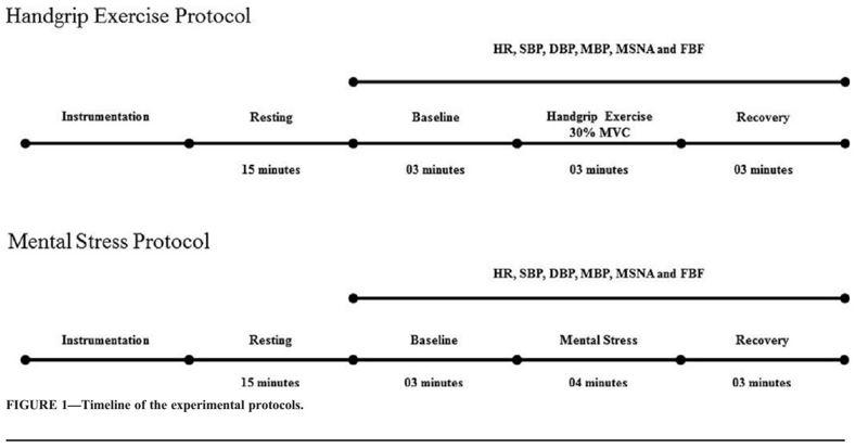 Respuesta neurovascular durante el ejercicio y el estrés mental en usuarios de esteroides anabólicos