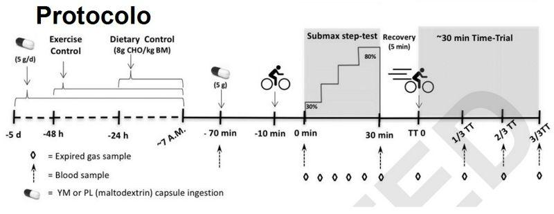 Efectos metabólicos y de rendimiento de la Yerba Mate en ciclistas bien entrenados
