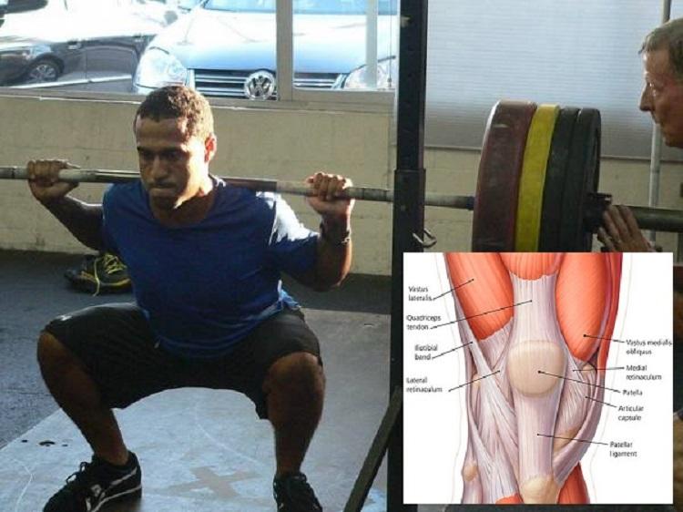 Biomarcadores asociados con baja, moderada, y alta hipertrofia muscular del vasto externo luego de 12 semanas de entrenamiento de la fuerza