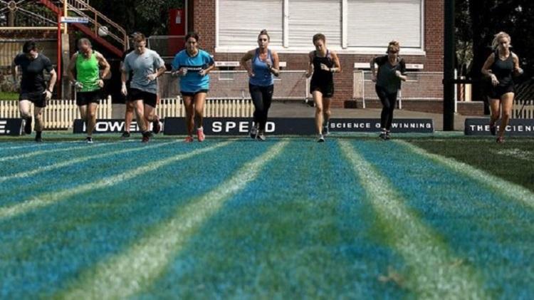 Efectos de 6 semanas de diferentes entrenamientos por intervalos de alta intensidad y continuo moderado sobre el rendimiento aeróbico y el rendimiento anaeróbico.
