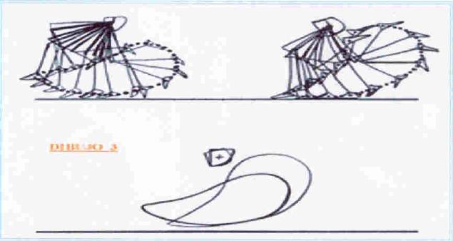 El ciclo de piernas anterior. Traduccion - Athlos