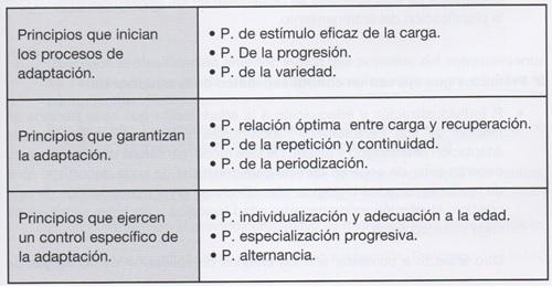 Principios de entrenamiento definicion