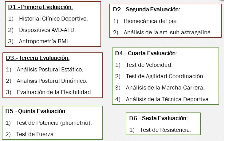 Anamnesis y registro de actividad con Wearables. Propuesta de ...