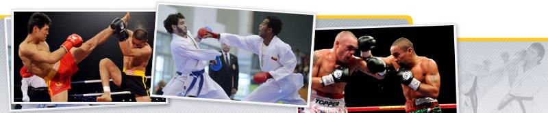 Análisis y desarrollo técnico-táctico en los deportes de combate