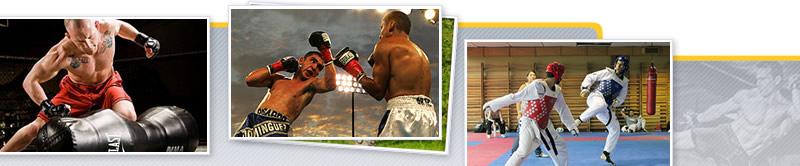 Desarrollo de la Fuerza-Potencia en los Deporte de Combate