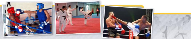 Aplicación de Tendencias Actuales para el Desarrollo y Mejora de la Condición Física en Deportes de Combate