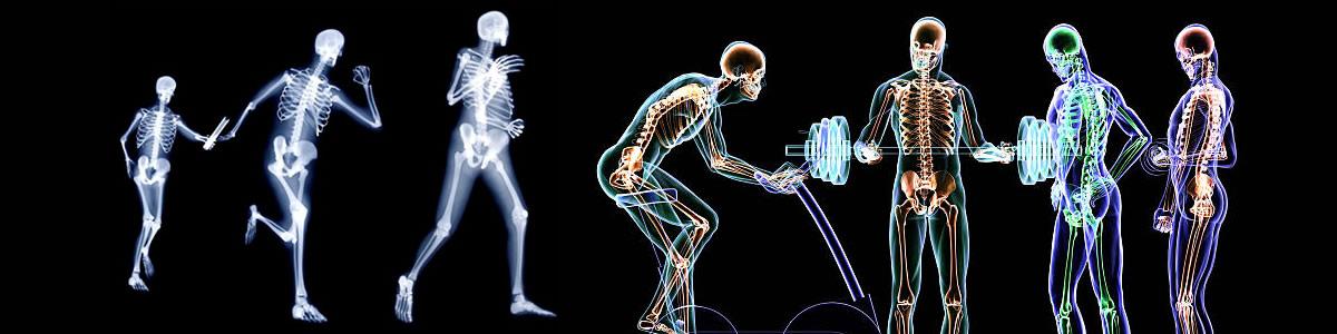 Neurociencias y Motricidad Humana
