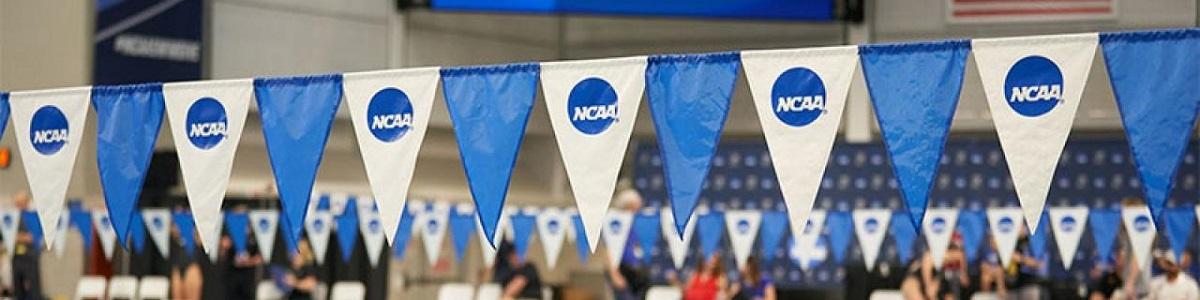 """Curso """"El Plan de Entrenamiento con diferentes visiones en NCAA"""""""