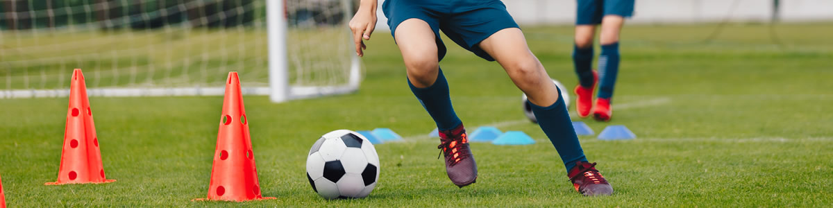 Curso de Especialización en Entrenamiento de Velocidad y Agilidad en Deportes de Equipo