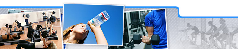 Curso de Entrenamiento Físico y Nutrición Orientado al Fitness y la Estética Corporal