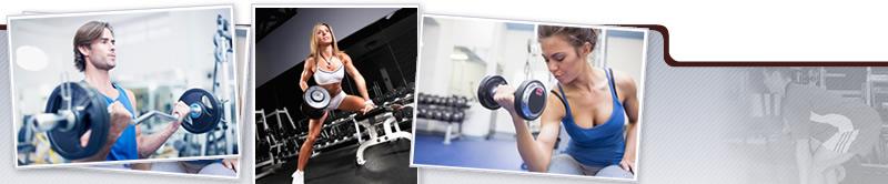 Taller Teórico práctico de Ejercicios con Sobrecarga Orientado al Fitness y la Salud