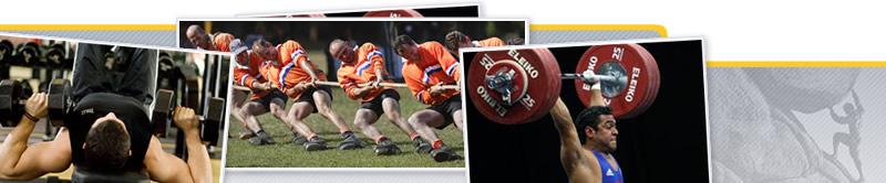 Webinar de Entrenamiento de la Fuerza para las Diferentes Modalidades Deportivas. Rendimiento Deportivo