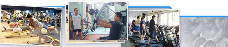 Webinar de Entrenamiento Concurrente para Principiantes en Salas de Musculación
