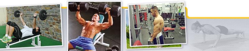 Webinar de Anatomía y Biomecánica del Tren Superior. Aplicación al Entrenamiento en Sala de Fitness