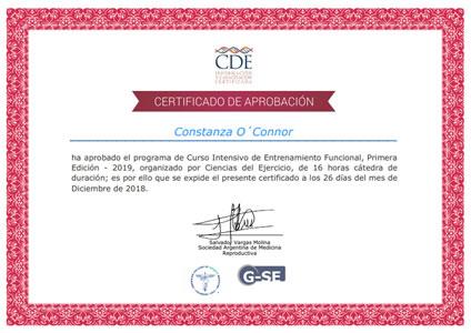 Certificado de Aprobación - Salvador Vargas Molina