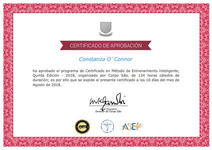 Certificado en Método de Entrenamiento Inteligente