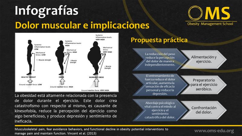 Obesidad y disfunción muscular