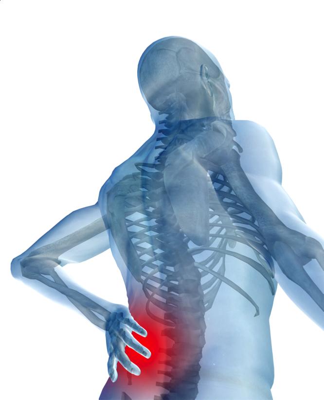 Core-training y Dolor Lumbar