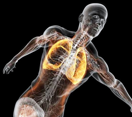 La influencia del Entrenamiento de la Musculatura Respiratoria en la Resistencia