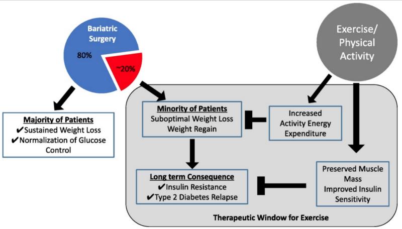 La desatención de la sarcopenia en la cirugía bariátrica