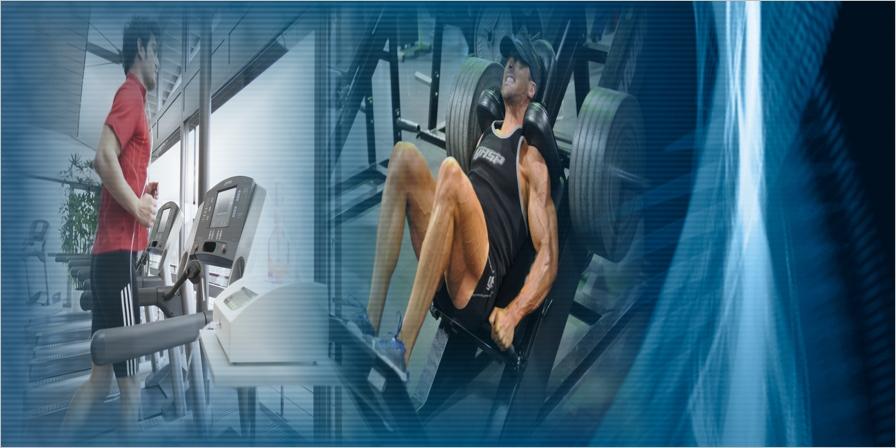 Mediciones de Creatinkinasa Sérica como Biomarcador en el Control del Entrenamiento Deportivo